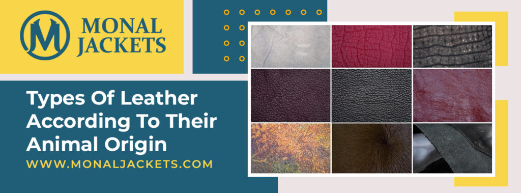 3 Types Of Leather According To Their Animal Origin | Monal Jackets